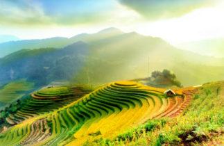 Novelvy Retraite au Vietnam