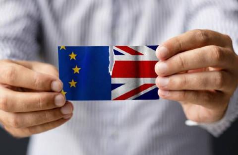 brexit les expatriés français